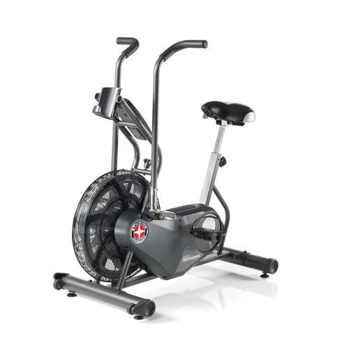 Schwinn Airdyne Ad6 Exercise Bike Upright Exercise Bike Biking Workout Exercise Bikes