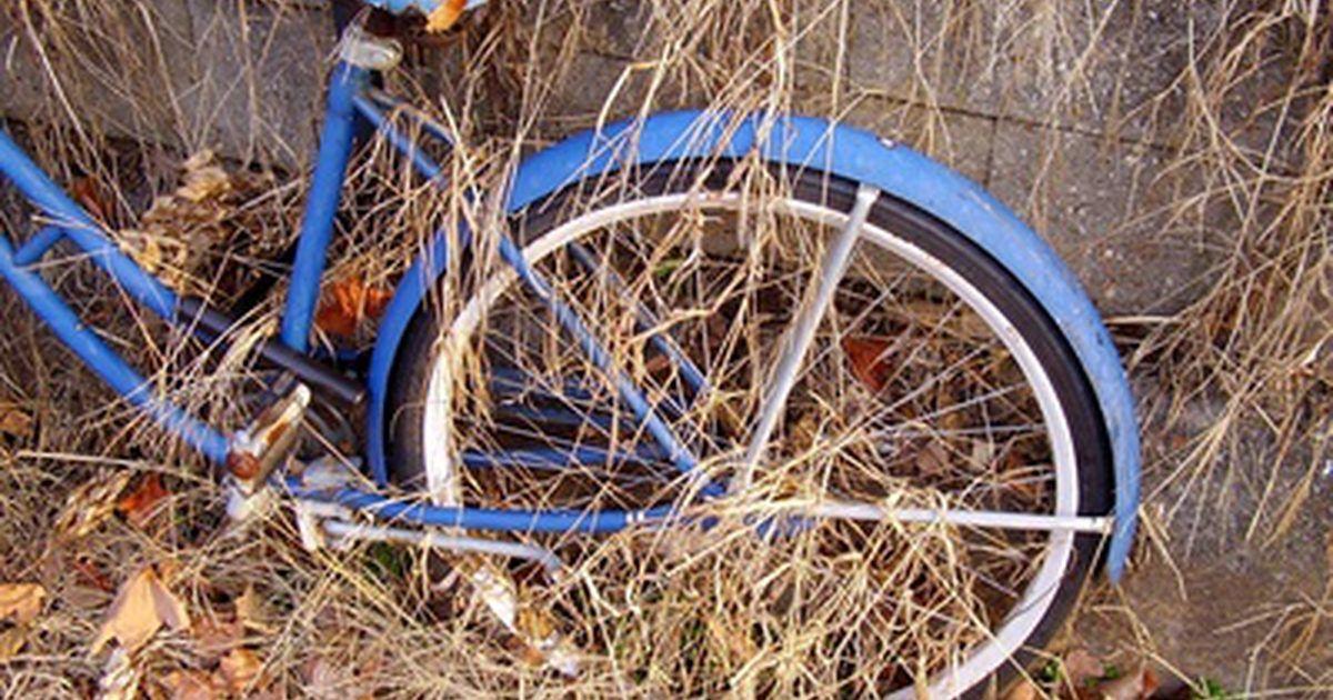 Cuál es el valor de las bicicletas clásicas Schwinn. Las bicicletas Schwinn se convirtieron en la marca dominante vendida en los EE.UU. en los años 1950 y 1960, sobre todo para los niños. Debido a que se construyeron una gran cantidad, no tienen un gran valor como objetos de colección.