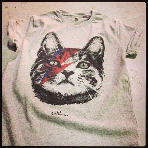 kitty tshirt design#funny#3d#custom art