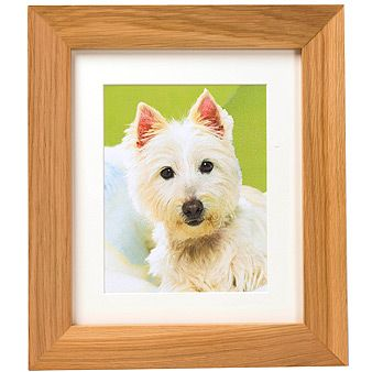 Discreet Ashes Pet Tribute Frame Pet Ashes Pet Memorial Gifts