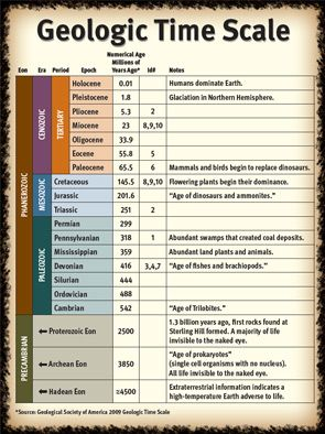 Geologic Time Scale | Geology Classroom ideas | Pinterest | Fossil
