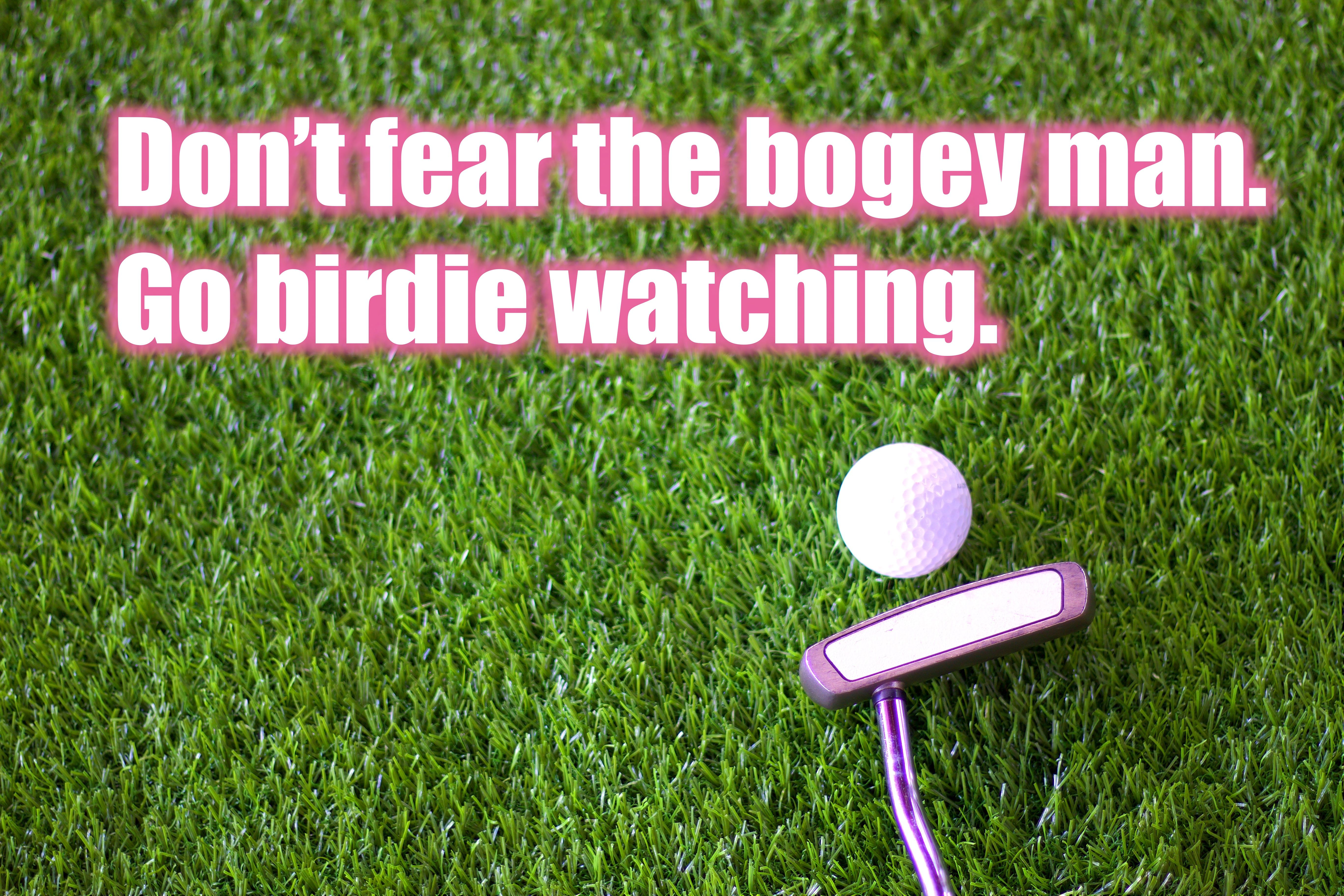 Golf Slogan Golf Quotes Golf Quotes Funny Golf Humor