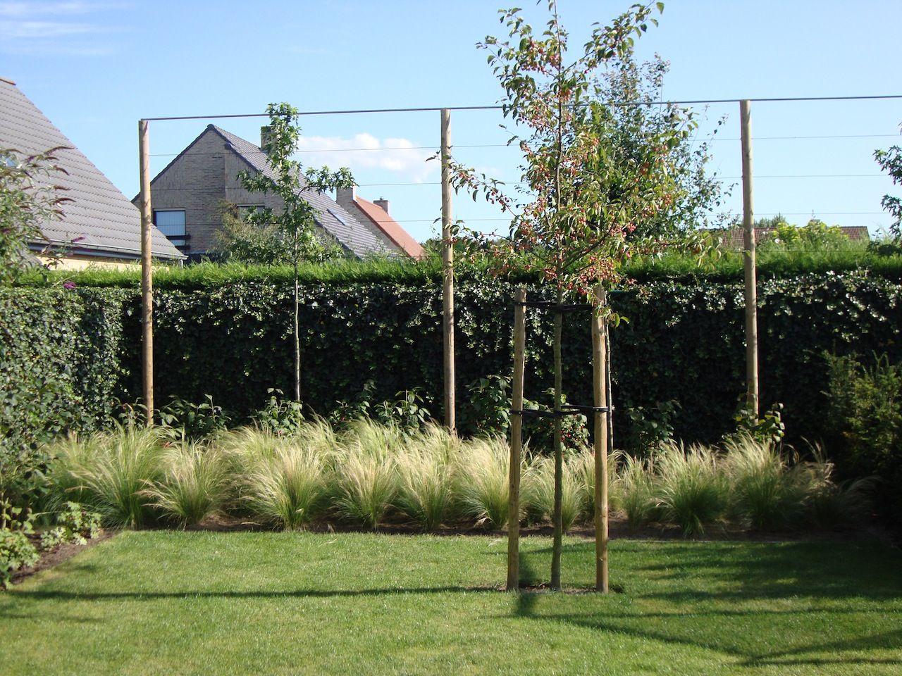 Afgewerkte projecten door jonas d hoore strakke tuin bij moderne
