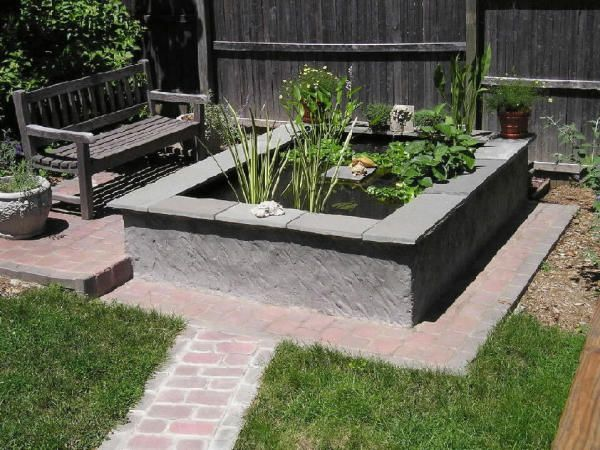 Pethobbyist photo gallery turtle ponds turtle pond for Above ground fish pond designs