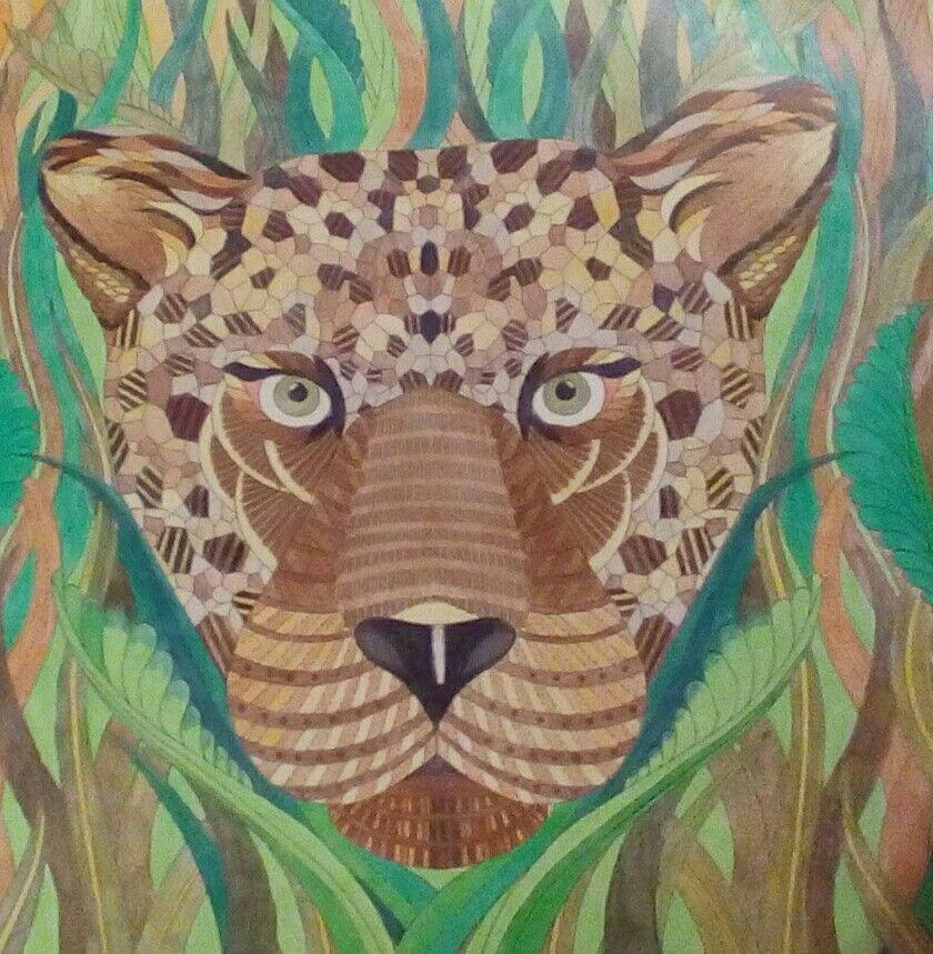 Millie Marotta Tropical Wonderland Leopard