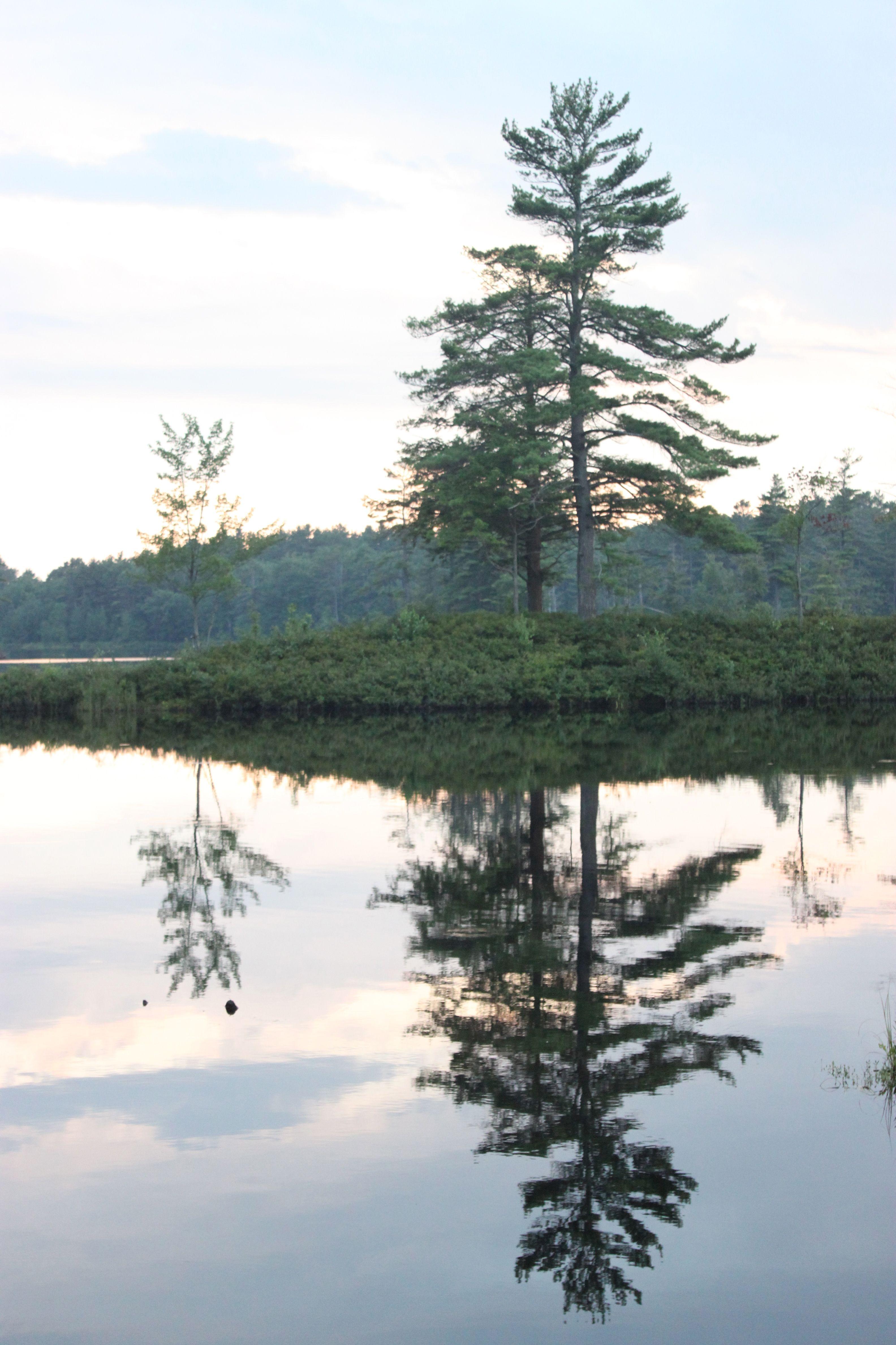 Tully Lake reflection. #reflection #photography #mirror
