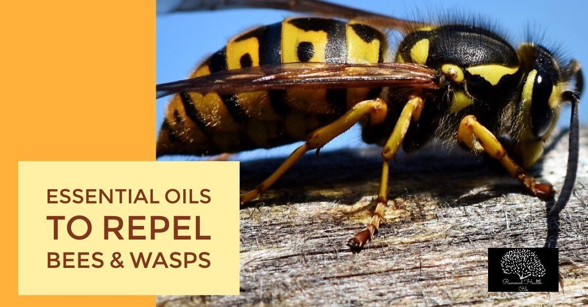 Are there any essential oils to repel bees and wasps