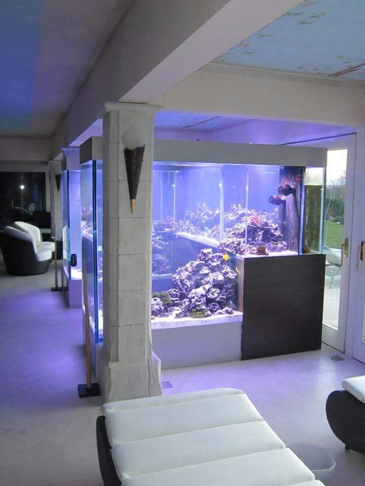 Aquarium Living Room Decor: Saltwater Tanks - Room Divider