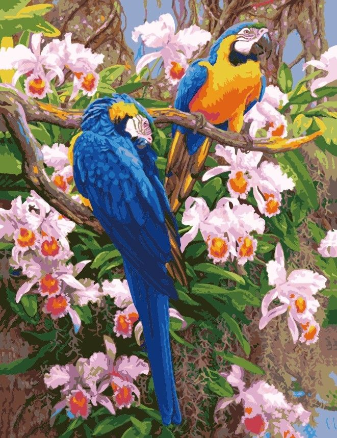 Hot Diy Oil Painting By Numbers Animals Parrot Frameless Painting On Canvas Home Decoration Home Wa Pintar Por Números Pintura Faça Você Mesmo Pinturas De Cruz
