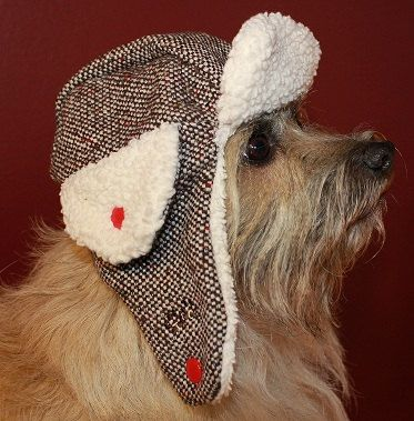 The Trapper Hat Cold Weather Hat For Dogs Featuring Rb Purple Tweed Fabric Cold Weather Hats Dog Hat Trapper Hats