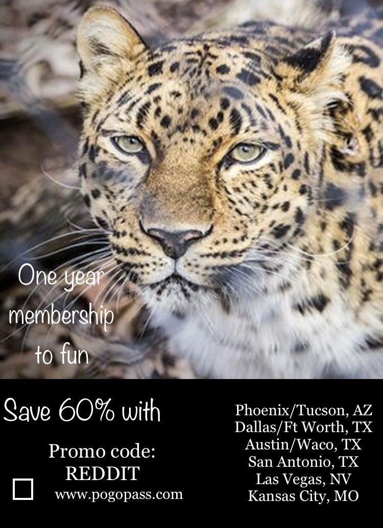 27 best pogo pass san antonio texas images in 2019 san antonio rh pinterest com