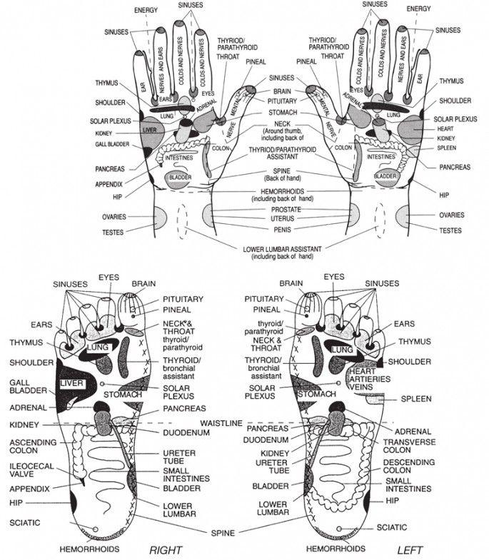 essential oils foot diagram