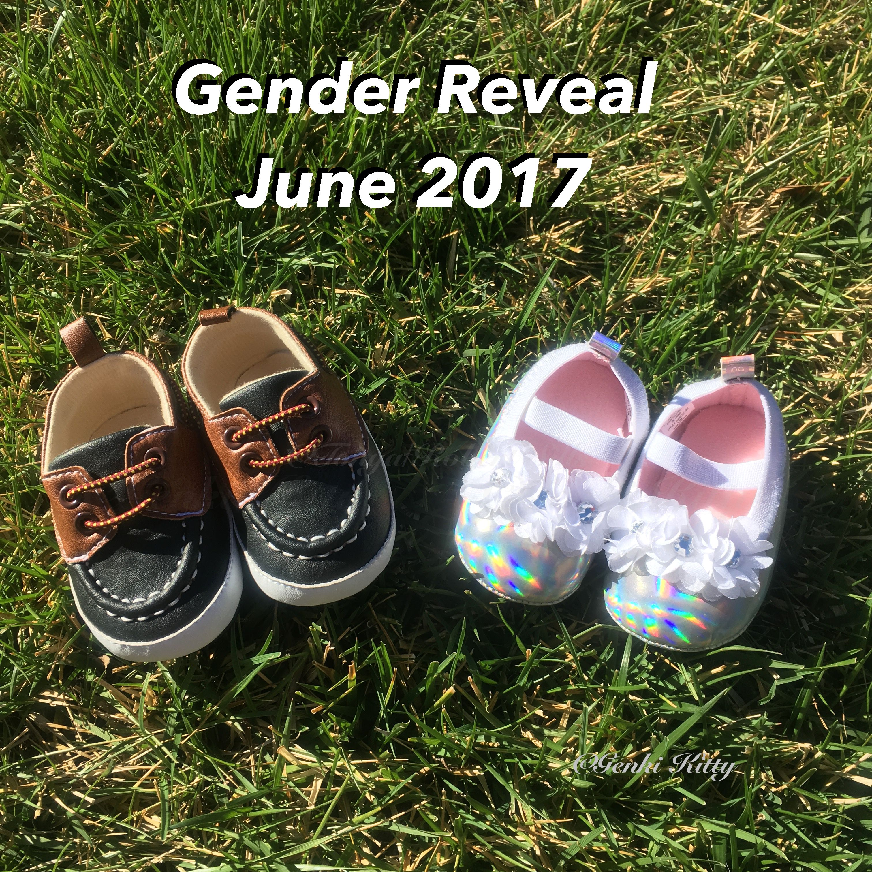 Twin Pregnancy Gender Reveal