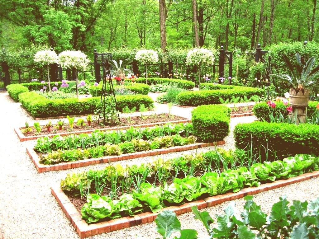 Herb Garden Design Ideas For Beginners Fusmun