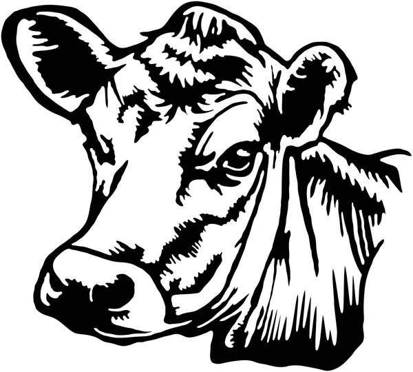 cow head silhouette cricut cow silhouette silhouette