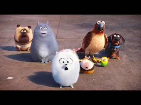 Whoa Did Katie Have A Kid In The Secret Life Of Pets 2 Secret