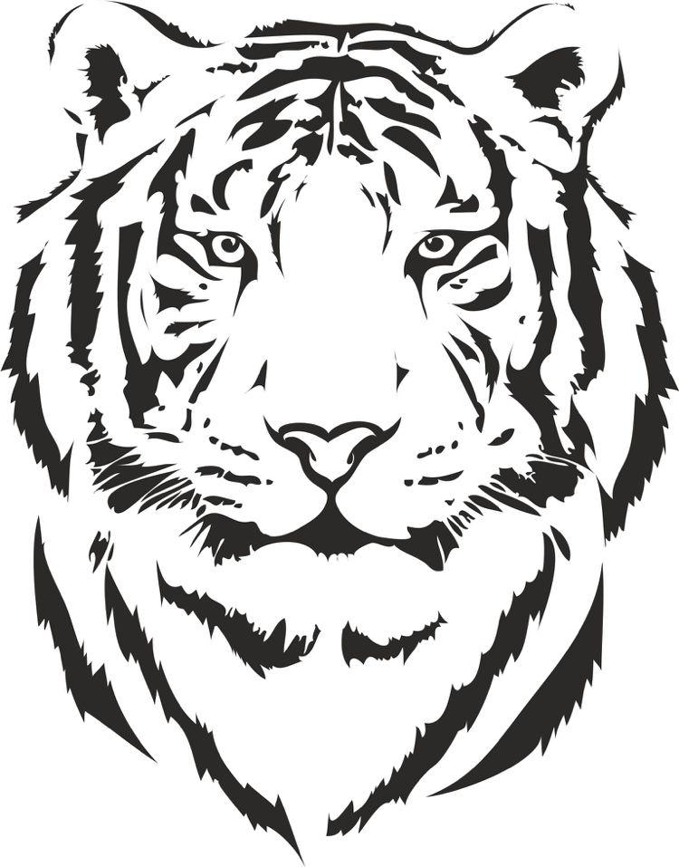 Tiger Logo Template Vector Image By C Korniakovstock 9