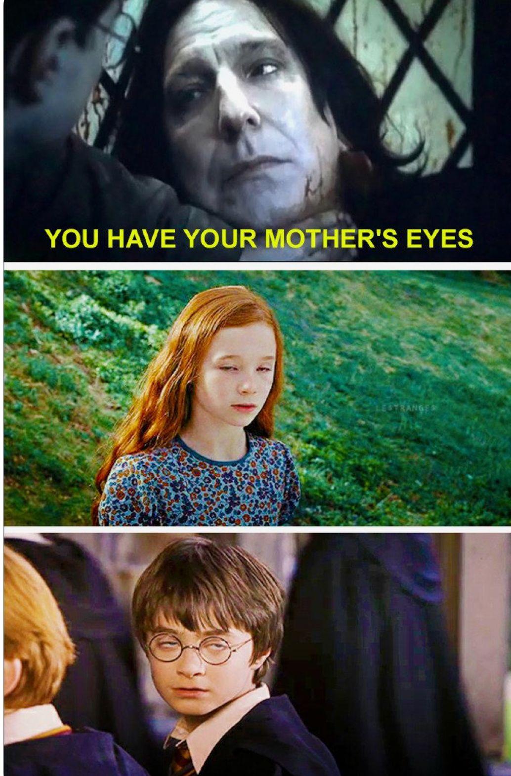 Hahahaha Omg Harry Potter Jokes Harry Potter Memes Hilarious Harry Potter Images