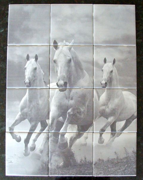 Professionally Engraved Tiles. Portrait measures 18 inches by 24 inches for a total of 12 tiles. Makes for a unique gift. You can install your tiles on a wall or turn it into a portrait by having it professionally framed. Three beautiful white horses. Portrait name is 3 Horses.    Price: $220.00     1067 - 3 Horses - 12 tiles