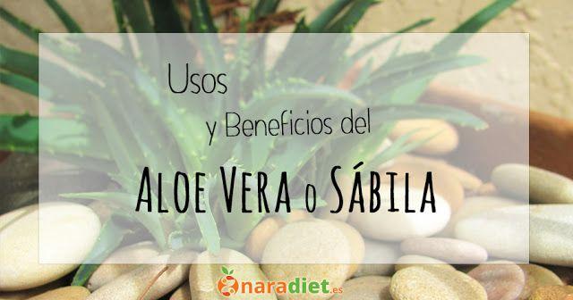 Usos y beneficios del Aloe Vera