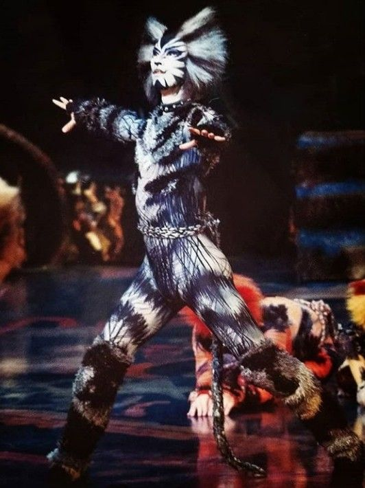 Japanese Munkustrap? in 2019 Cats musical, Musicals