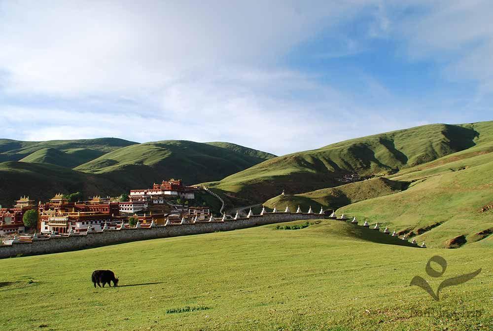 LITANG, un pequeño pueblo tibetano que en su parte antigua aún conserva ese encanto típico del Tíbet!  LITANG, a small Tibetan village that still have its old Tibetan charm!