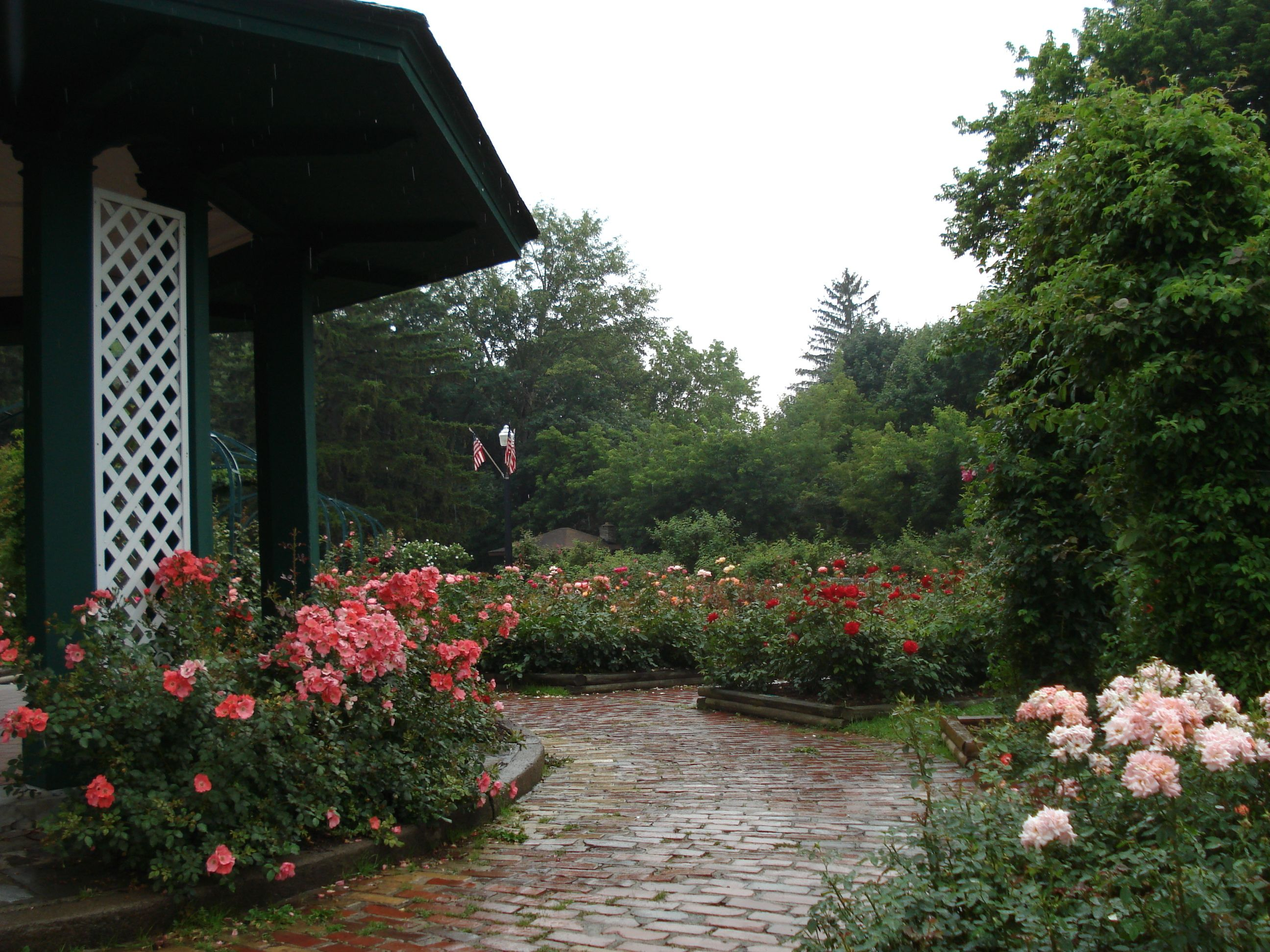 Dr E M Mills Rose Garden is located in Thornden Park Syracuse