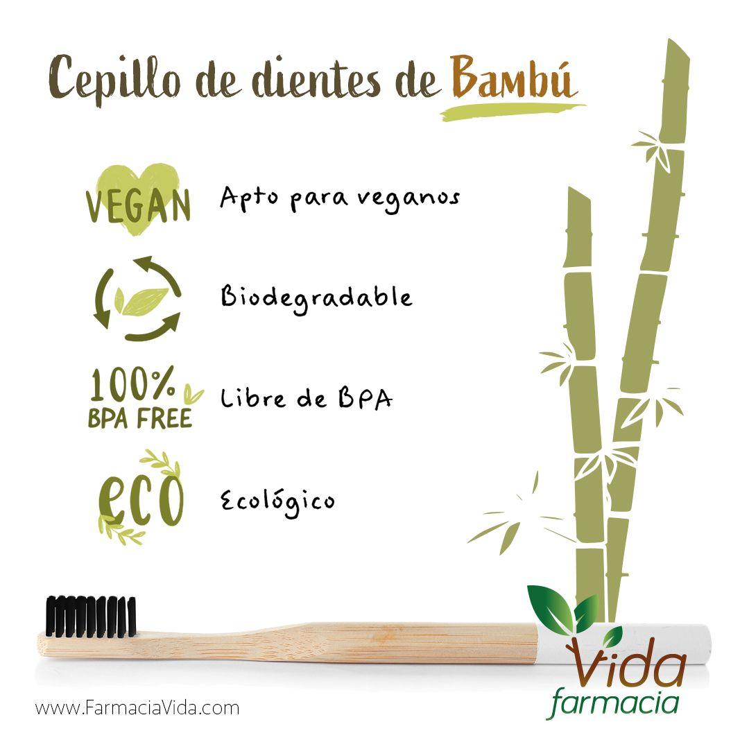 9 Ideas De Cepillos Ecologicos Cepillo Fondos Ecologicos Cepillado Dental