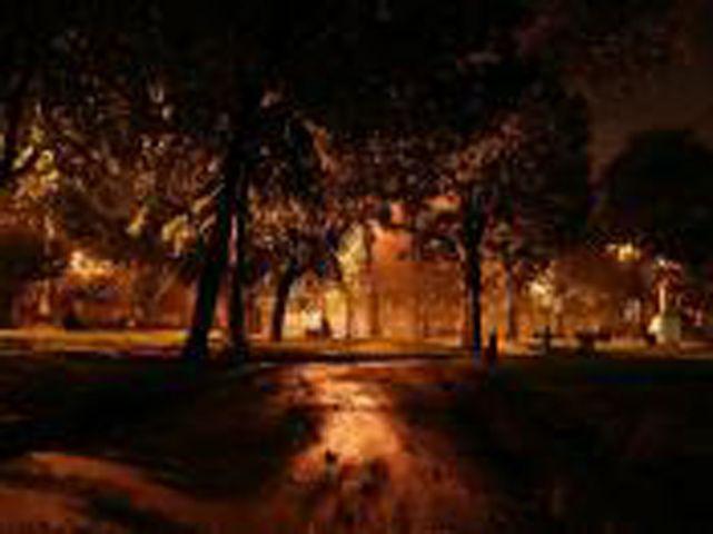 Dark....Park...Night