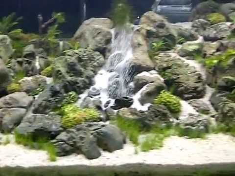 Riam macam aquajaya main tank an underwater waterfall for Waterfall fish tank