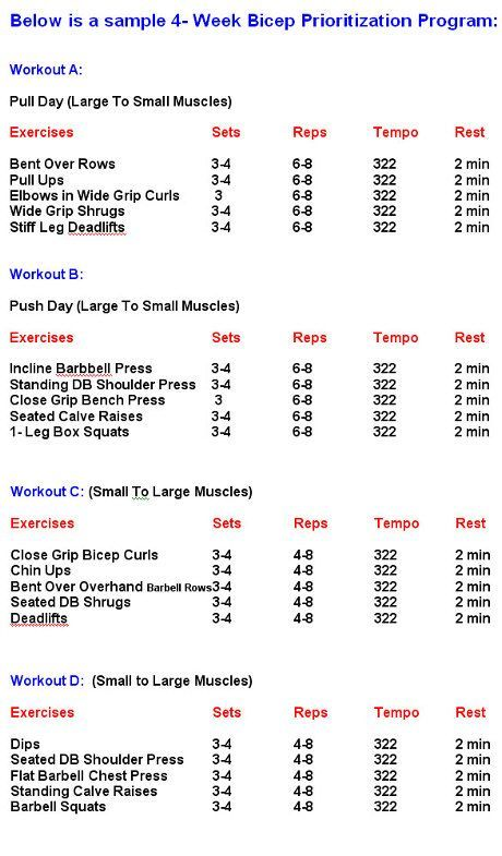 Vince Demonteu0027s 4-week Bicep Workout My schedule Sunu003dRest, Monu003dA - workout sheet