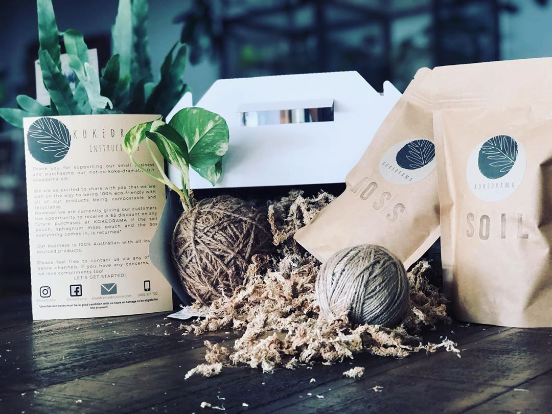 We are almost 100% compostable and recyclable! But until we get there, we are offering discounts for the return of the pouches and boxes once you have made your kokedama to make it a completely waste free kit 🌱🌿🌾 • • • #kokedama #kokedrama #perthplants #indoorplantsperth #indoorplants #diykit #diy #doityourself #perth #perthwillbeok #perthbusiness #localbusiness #delivery #plantsdelivered #kokedamaperth #kokedamas #kokedamalovers #mossball #kokedamasofinstagram #mossballsofinstagram #perthsup