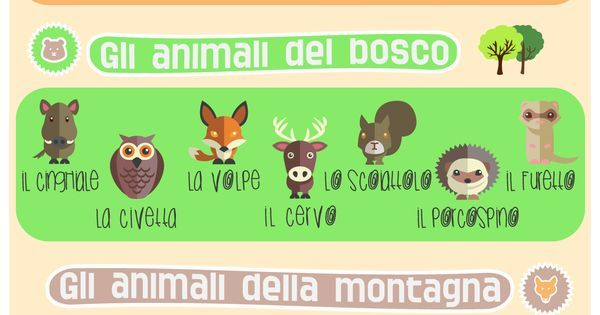 Learn Italian words: animal names, an infographic!   Language   Pinterest   Italy., An and Italian
