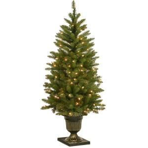 National Tree Company 4 ft Dunhill Fir Entrance Artificial Christmas Tree with Clear LightsDUH335740  The Home Depot
