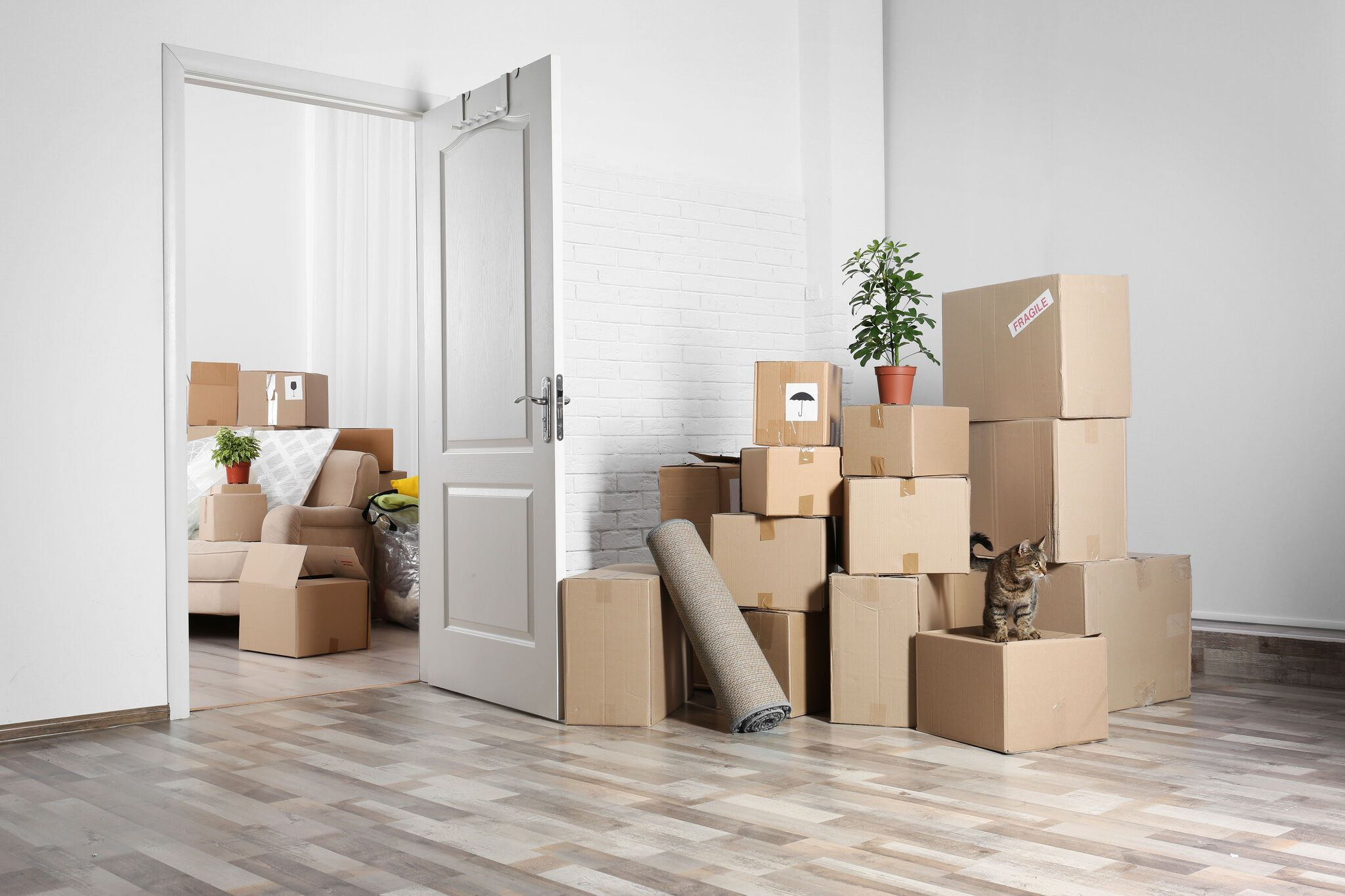 Don T Be Afraid To Order Lots Of Packing Boxes Because You Never Know How Many You Will Need Better To Be Safe T House Removals Moving House Tips