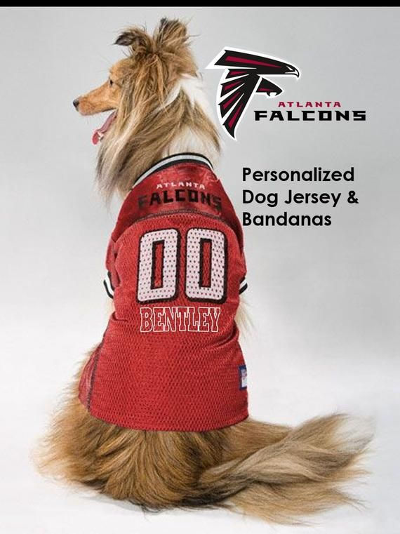 a24fd620 Atlanta Falcons Pet Dog Jersey - Personalized in 2019 | Products ...