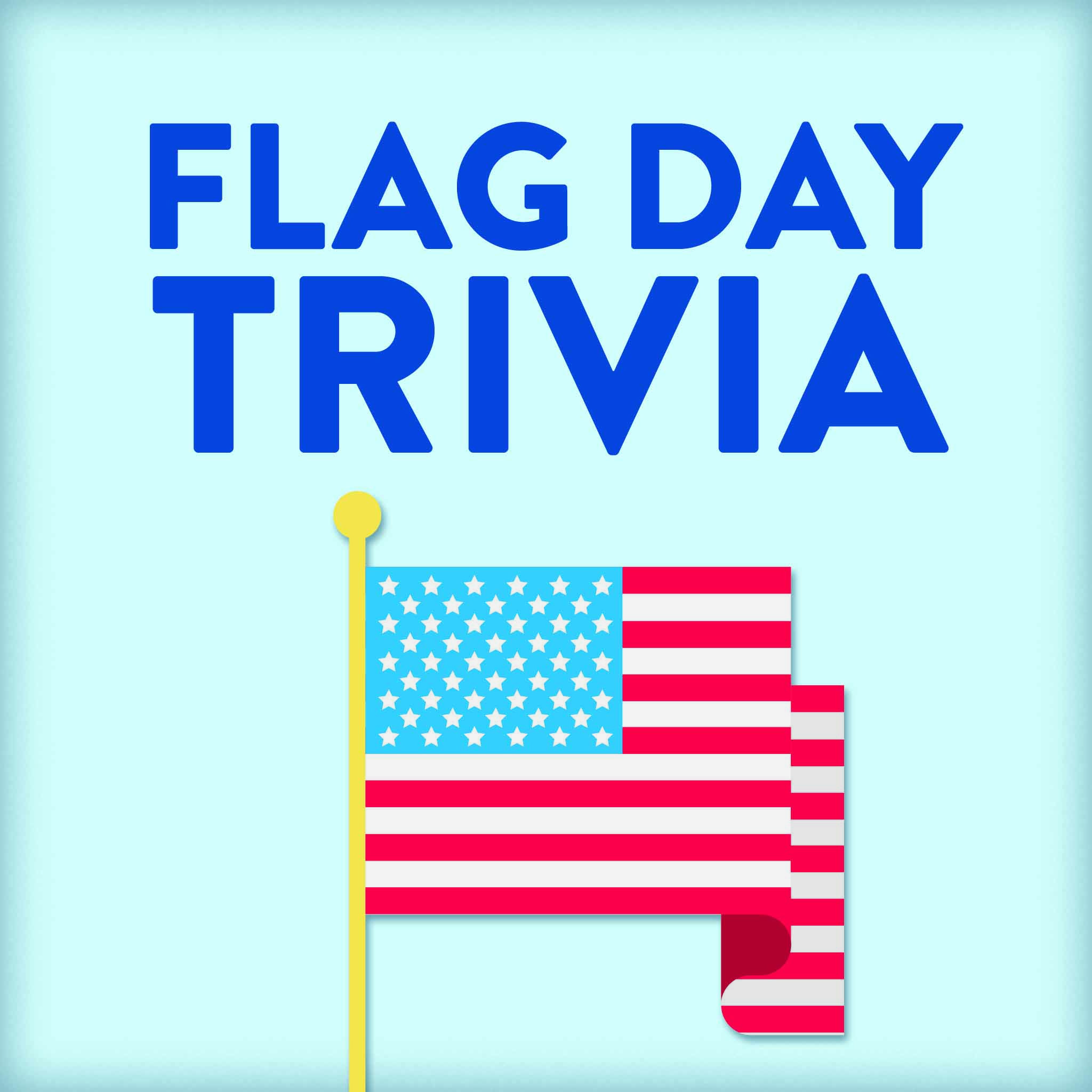10 Fun Facts About The American Flag Learning Liftoff American Flag Facts Flag Day Facts Flag Crafts