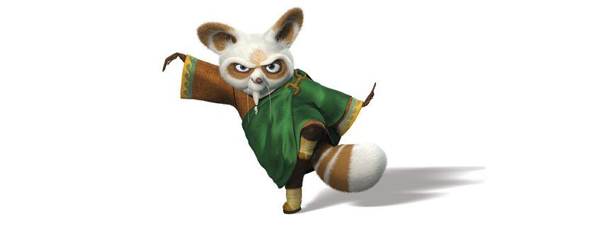 Master Shifu Kung Fu Panda 2