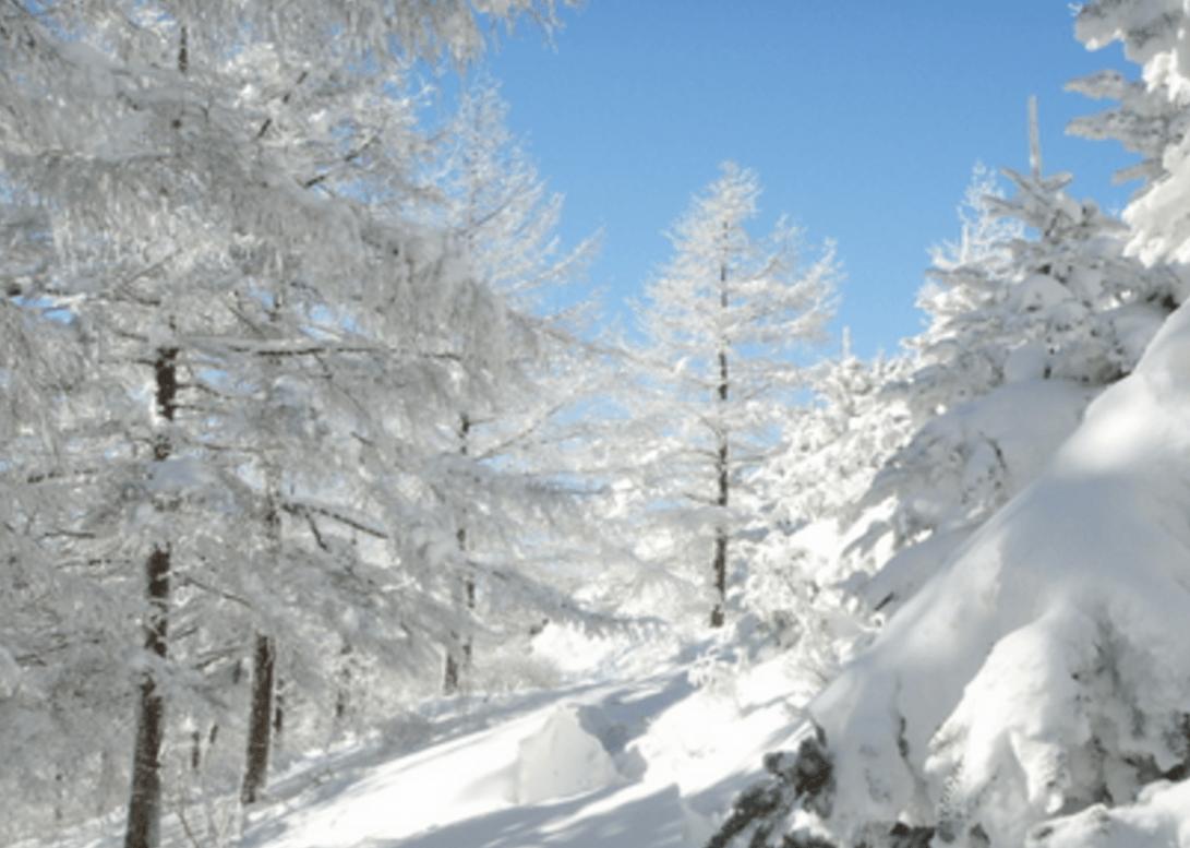 10 winter festivals in korea snow lights ice more. Black Bedroom Furniture Sets. Home Design Ideas