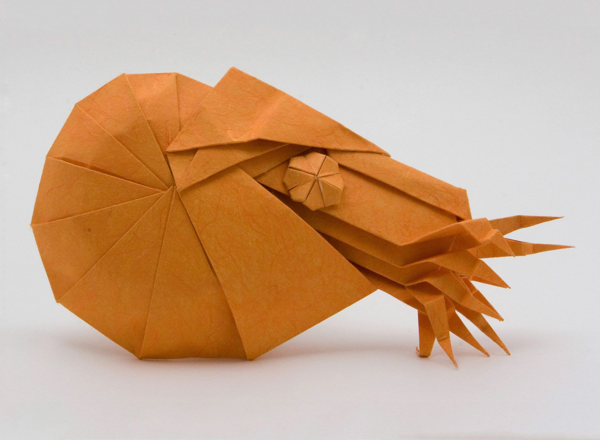 Origami bust little by eric joisel folded by gilad aharoni origami bust little by eric joisel folded by gilad aharoni origami pinterest origami papercraft and oragami jeuxipadfo Image collections