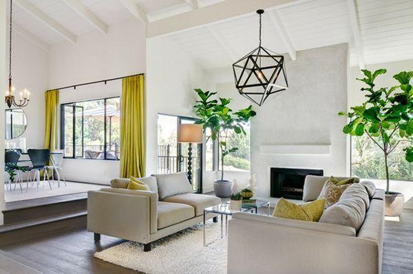 Eine Pflanze als Dekoration Geigen-Feige für eine belebte - pflanzen dekoration wohnzimmer