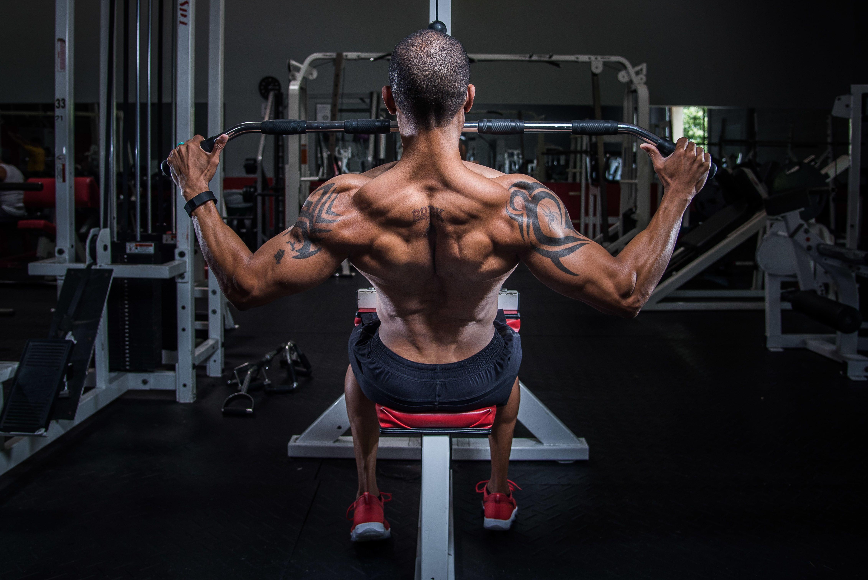 grey and black exercise equipment #man #back #workout #bodybuilding #4K  #wallpaper #hdwallpaper #desktop   Muscle fitness, Workout, Bodybuilding