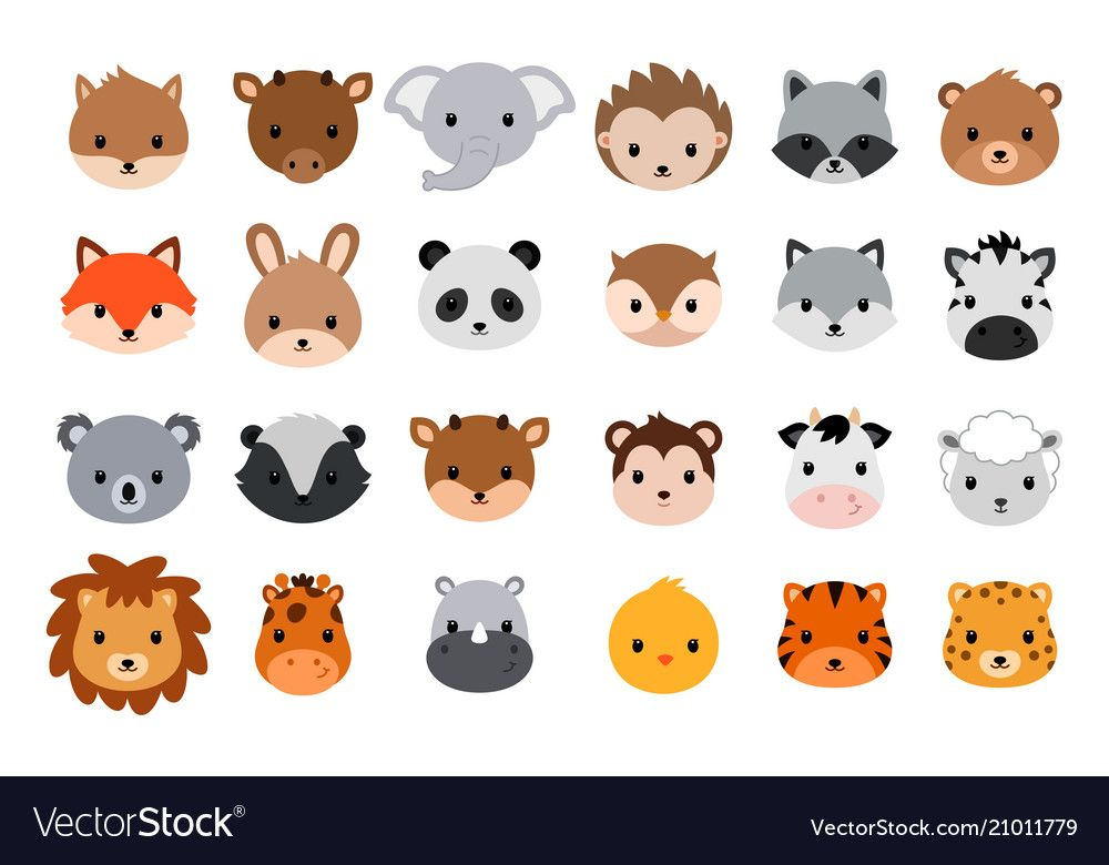Cute Animal Heads Collection Vector Animals Heads Isolated On White Background Download A Free Preview Or H Cute Cartoon Animals Cartoon Animals Cute Cartoon