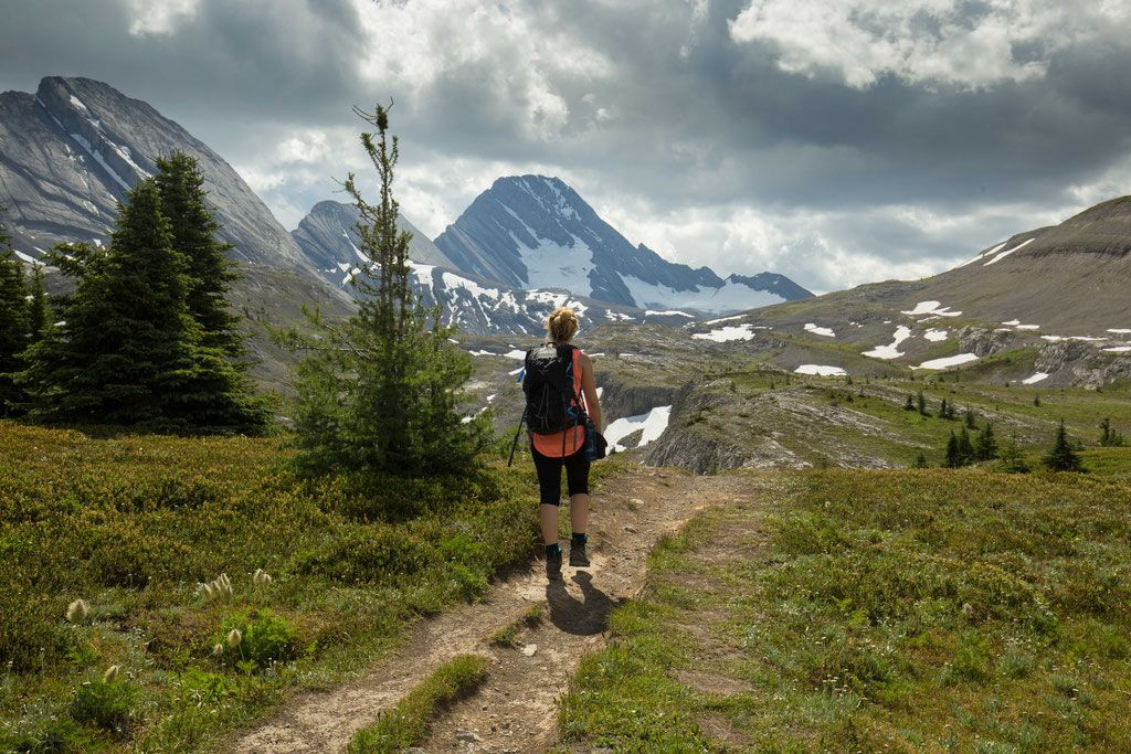 14 Day Hikes With Jaw-Dropping Views In Canmore And