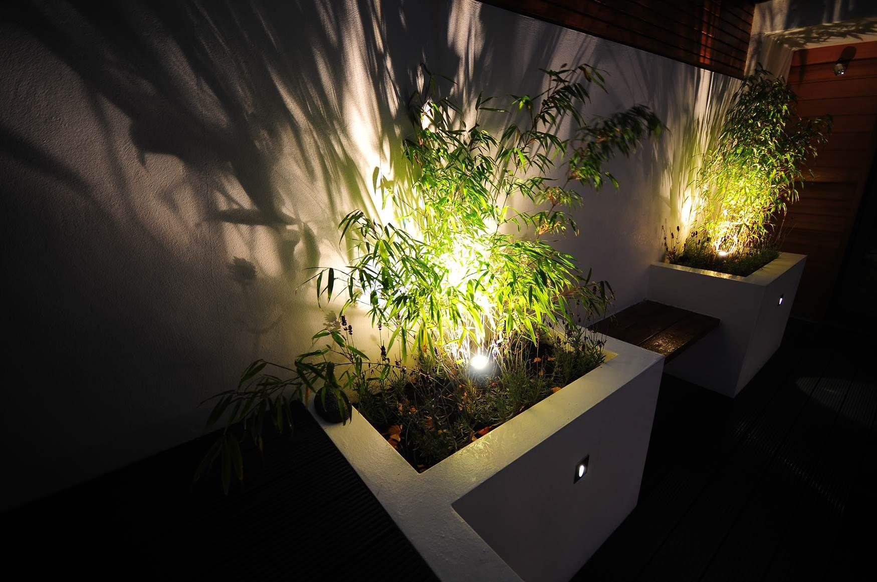 Garden lighting design by Mr Resistor. Uplighting plants ...