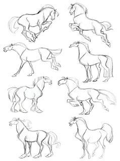 Full Body Horse Drawing : horse, drawing, Poses,, Showin, Their, Horsey, Movements, Animal, Drawings,, Horse, Drawings