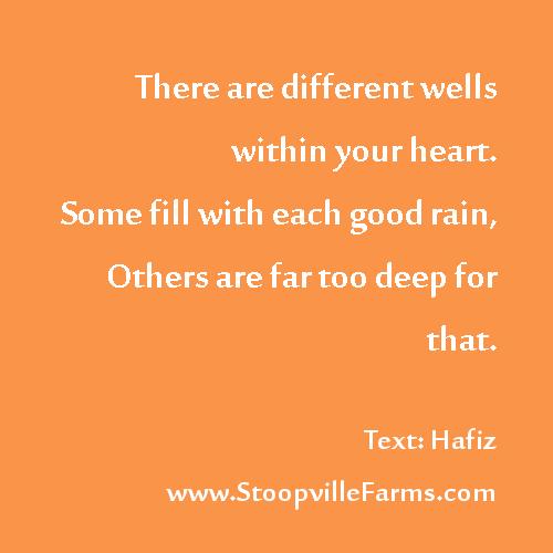 wells in the heart run deep
