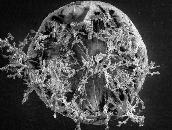 Close-up image of a grain of salt from a laboratory study of the salts that form on jet turbines in midflight. Hollie Rosier, Swansea University