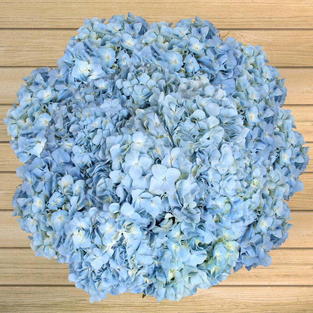 24 Stem Hydrangeas In 2020 Event Flowers Wedding Flowers Flower Bouquet Wedding