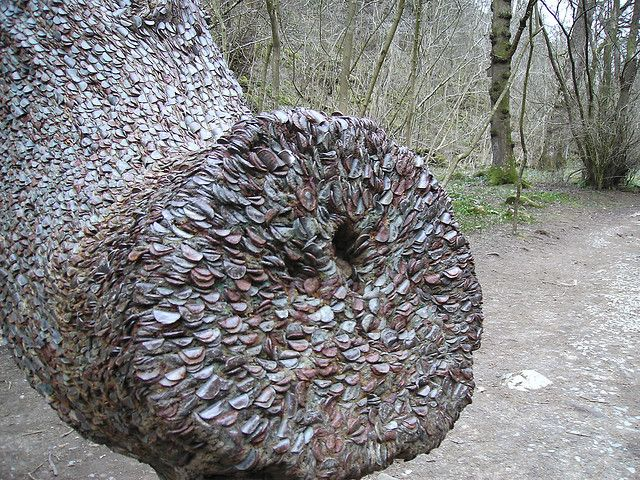 The coin tree